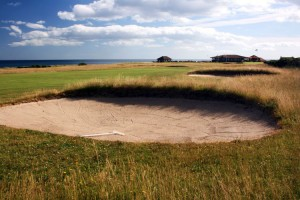 Bunkers and Greens